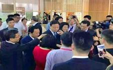 英德红茶增色第二届中国国际茶叶博览会