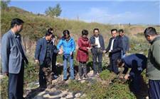 青海通报扶贫领域腐败典型案例 警示扶贫干部勿要以身试法