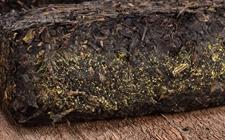 安化黑茶和六堡茶有什么区别?安化黑茶和六堡茶的区别
