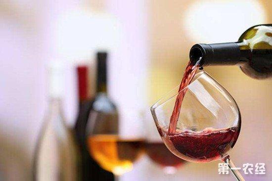 冬天喝葡萄酒有哪些功效和作用?