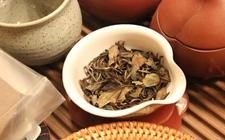 大悟寿眉茶的特点有哪些?大悟寿眉茶的特点介绍