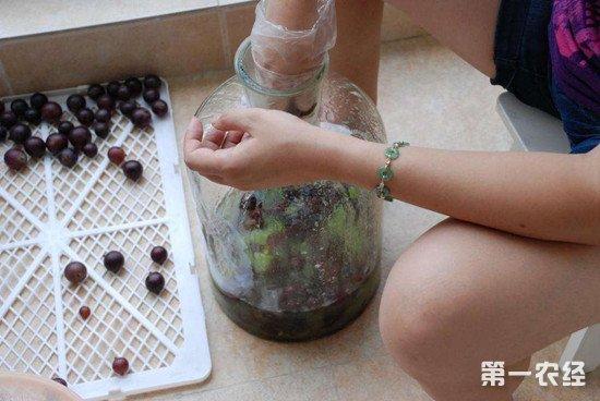 自制葡萄酒的保存方法