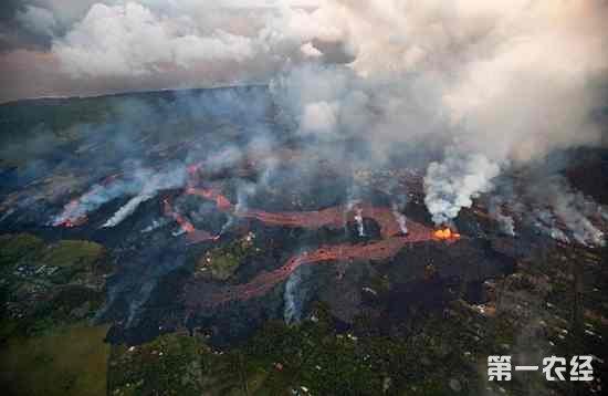 美国夏威夷大岛发生5.6级地震 夏威夷一周地震数百次