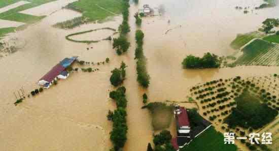 江西连续暴雨致17万人受灾 直接经济损失5.42亿元