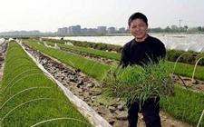 <b>回村种地也能致富?农民张立峰的返乡创业史</b>