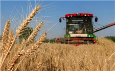河南小麦收割基本完成 农机将出省增援各地