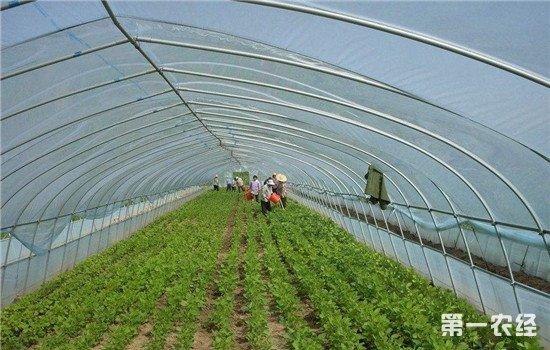"""在北京房山区出现""""以工换工""""合作社 农民表示欢迎"""
