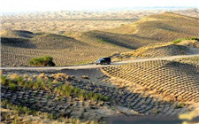 我国三成贫困人口处在荒漠化地区 防治荒漠化是扶贫必攻之地