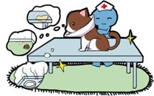 5-11月全国动物诊疗行业专项整治行动