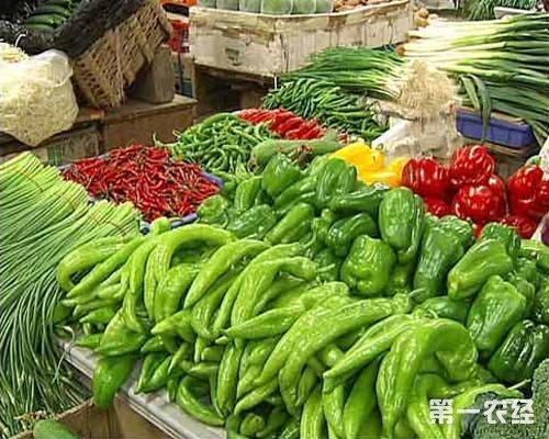 山东上周蔬菜平均价格下降 未来或持续小幅下降