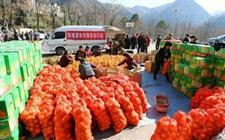 <b>精准扶贫:电商扶贫帮助农民外销农产品 摆脱经济贫困的现状</b>