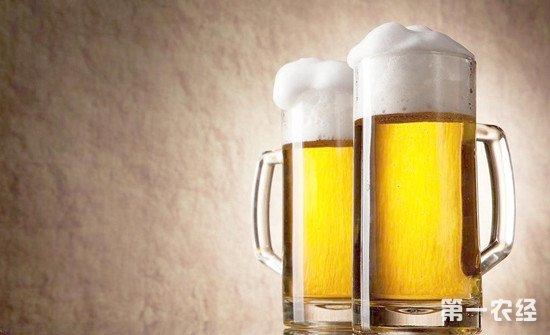啤酒也有这么多种?生啤酒、熟啤酒、扎啤酒这些啤酒有什么区别?
