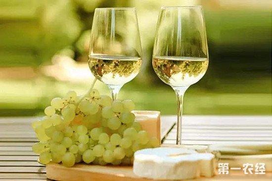 用白葡萄做的就是白葡萄酒?这可是大错特错了