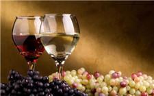 新旧世界葡萄酒是什么意思?有什么区别?