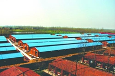 走时中国顶尖养猪企业,引领中同养猪业再上新台阶