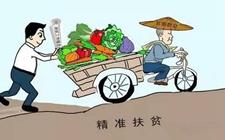 辽宁:电商下乡成为百姓脱贫利器