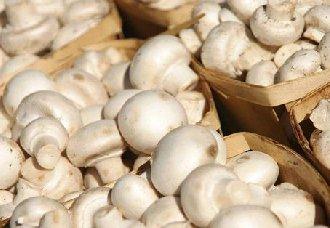 广西:食用菌成主产业使贫困户成功脱贫 亦带动全省经济发展