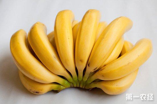 河南万邦:应季水果大量上市 果品价格整体下降