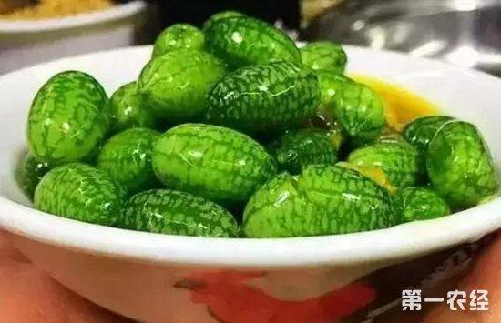 江苏连云港:拇指西瓜上市 尝鲜价每公斤100元