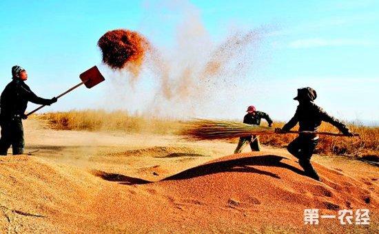 """韩长赋介绍,农民是中国人口的最大多数,是中国共产党执政的基础,广大农民在革命、建设、改革等各个历史时期都做出了重大贡献。中央决定,在脱贫攻坚的关键时期、全面建成小康社会的决胜阶段、实施乡村振兴战略的开局之年,设立""""中国农民丰收节"""",顺应了新时代的新要求、新期待,将极大调动起亿万农民的积极性、主动性、创造性,提升亿万农民的荣誉感、幸福感、获得感,汇聚起脱贫攻坚、全面建成小康社会、实施乡村振兴战略,加快推进农业农村现代化的磅礴力量。"""