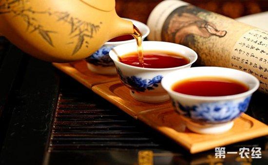 怎样正确品鉴普洱茶?这四个步骤你一定要掌握