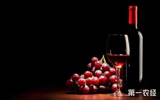 红酒和葡萄酒的区别 红酒能概称葡萄酒吗?