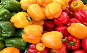 彩色甜椒都有哪些品种?彩色甜椒的品种种类和生长特点