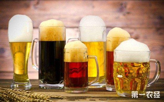 啤酒的度数为什么那么低