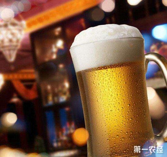 啤酒的度数为什么那么低?有没有高度数的啤酒