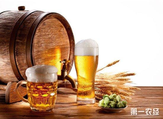 过期啤酒还能有这些妙用