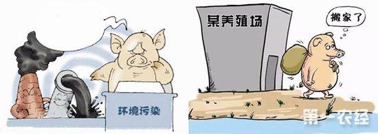 """广东云浮全力整治畜牧业 狠抓""""三区""""清理工作"""
