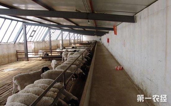 湖北荆门畜禽规模养殖场排查 已完成2153个养殖场配套改造