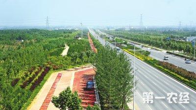 河南郑州:全市域的三级生态廊道基本形成 已建成林业生态廊道3600多公里