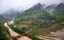 重庆:首批10个区县为农村综合性改革试点