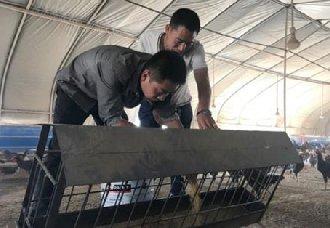 <b>兰州:杨家山村黄国业将穷山变为聚宝盆 带动村民脱贫致富</b>