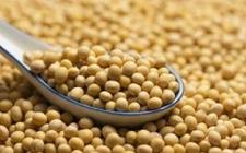 2017-2018年俄粮食出口量大增 中国提高俄罗斯大豆进口量