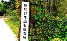 寺库农业 慢生活系列:回归时间的本真味道