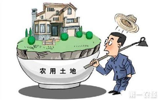 8月1日起,中国农用地和建设用地将有新标准