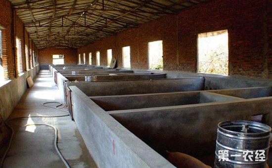 农经网 养猪网 养猪场       亦采用带运动坪的单列或双列式,开放或半图片