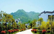 <b>重庆奉节:努力推进乡村改革发展 集中打造29个乡村振兴示范片区</b>