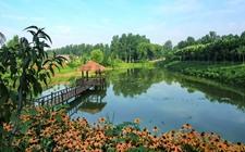 湖南省东安县:拓展乡村微旅游项目,助力乡村经济振兴