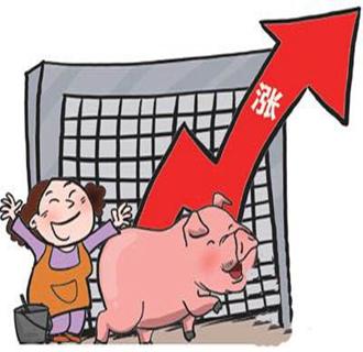 今日生猪价格多地均上涨,符合预期值!