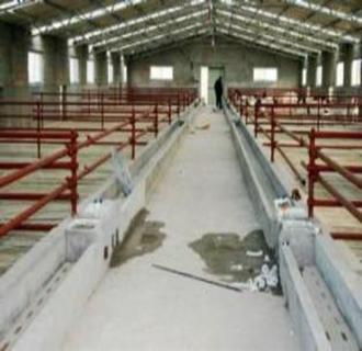 养猪场在建设时,如何做到防寒保温?