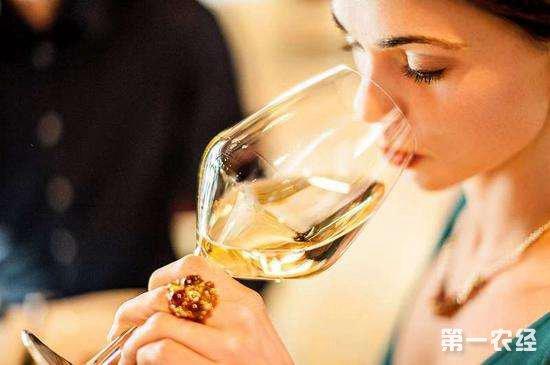 葡萄酒怎么喝?葡萄酒的品酒步骤