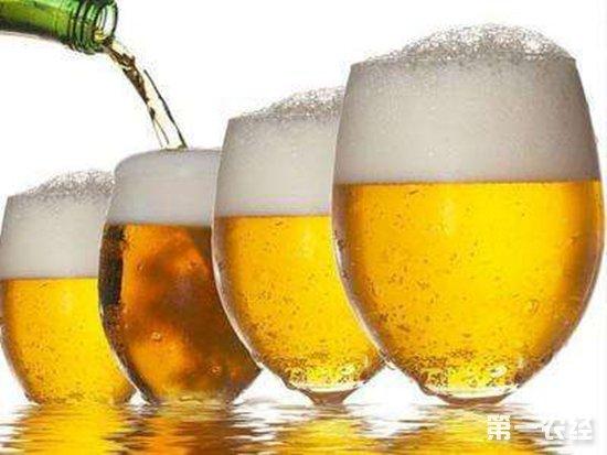 喝啤酒比喝白酒更容易醉是什么原因?