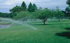 智能灌溉,全天候及时补给植物所