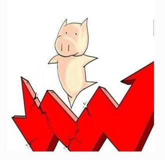 猪价继续上涨,注意回调风险