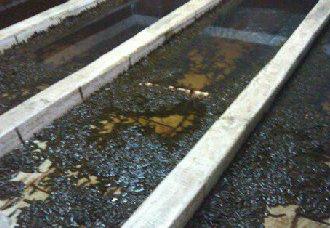 """""""一种旋流集污的养殖池系统""""获国家发明专利授权 避免水体二次污染"""
