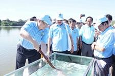 中方派团参加柬埔寨第16届国家放鱼日活动