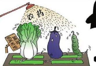 安徽:省食药监局检出永辉超市韭菜、薄皮椒农残超标